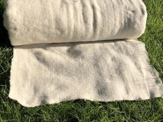 Рулонный газон, Новинка сухой газон по Голландской технологии