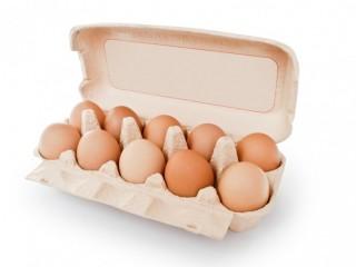 Яйцо куриное мелким и крупным оптом Днепр