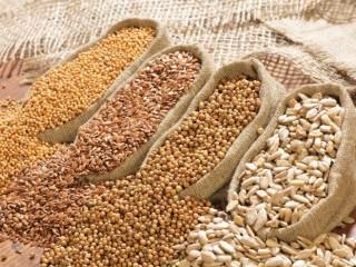 Зерновідходи, зерносуміші, всі види зернових