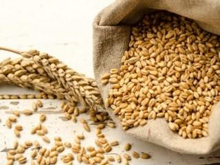 Куплю зернові, зерновідходи. Будь-які варіанти