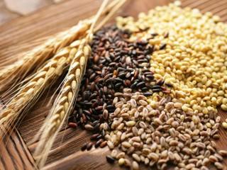 Зернові. Зерновідходи. Кукурудза. Пшениця. Соя.