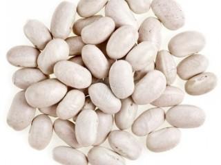 Закупаем фасоль у населения и производителей