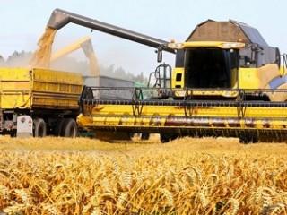 Перевезення зерна по Україні. Послуги зерновозів.