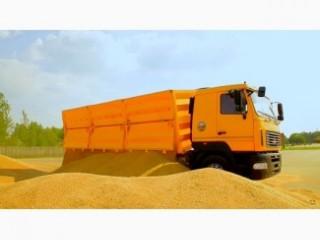 Услуги зерновозов. Транспортная компания по перевозке зерна