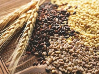Постійно закуповуємо зерновідходи олійні, зернові, бобові!